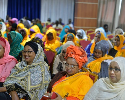 2016_09_22_Somali_Women_Conference-10